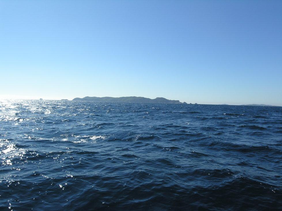 L'île de Porquerolles, vue de l'ouest.