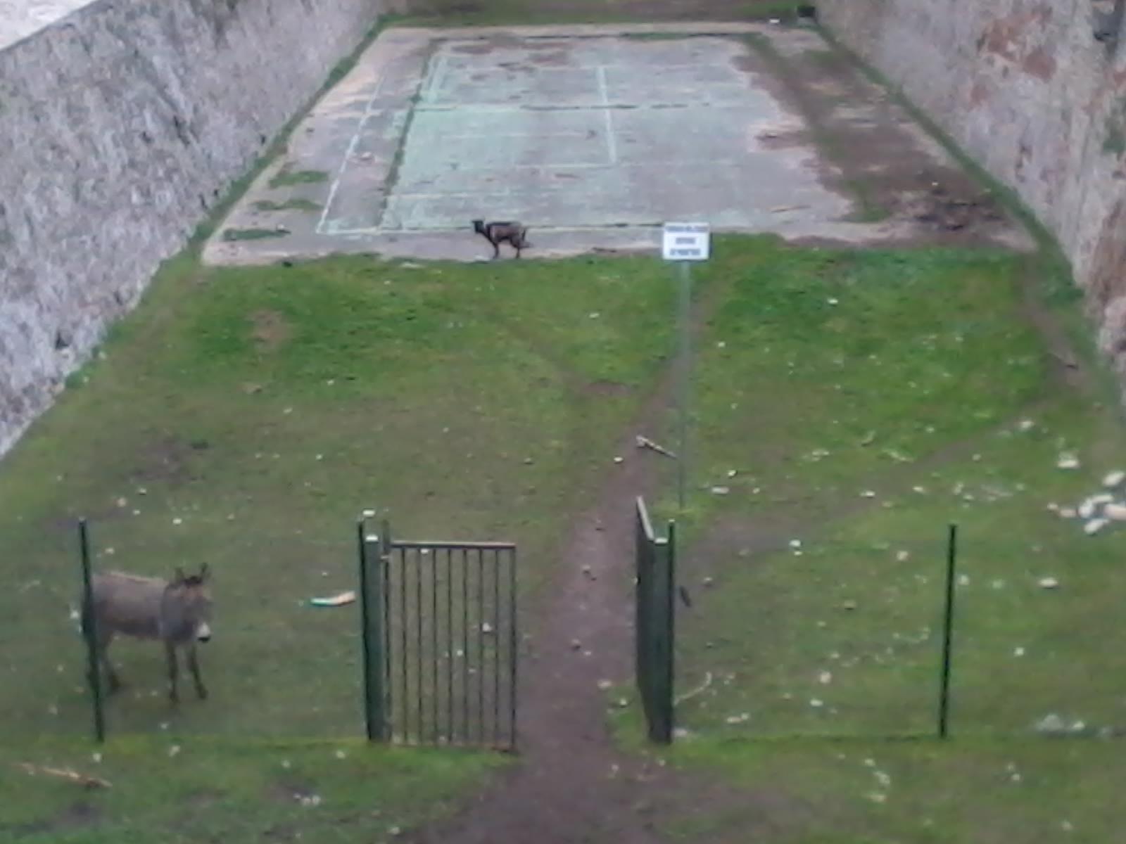Zone militaire, défense de pénétrer